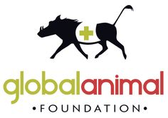 Global Animal Foundation--- HUGE list of companies that don't test on animals, list of catalogs and online stores to shop for CF products, & CF pet food suppliers! All About Animals, Save Animals, Wild Animals, Animal Intelligence, Foundation Logo, Pet Organization, Dog List, Cute Animal Videos, Losing A Pet