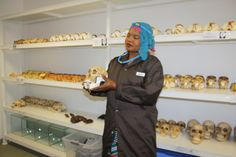 A staffer shows the rows of fossil casts produced at the Marapo fossil casting laboratory at the Sterkfontein Caves in the Cradle of Humankind, Gauteng, South Africa.