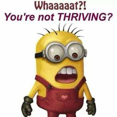 Get your THRIVE on!!! Sign up for free with no obligation!