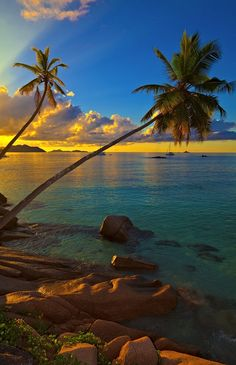 Excellent sunset view with a big stones and palmtrees, Seychelles, La Digue island