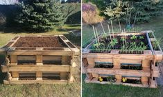 Vegetable Garden Design, Outdoor Furniture Sets, Outdoor Decor, Homesteading, Projects To Try, Home And Garden, House Design, Vegetables, Plants