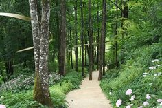 Lovely woodland planting & note the ribbon winding through the trees. Les Jardins de l'Imaginaire. Designed by Kathryn Gustafson.