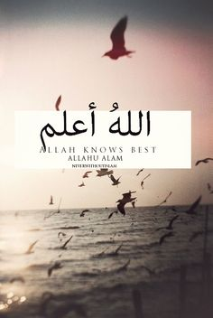 And Allah knows best