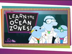 Ocean videos for kids that are perfect for your study of the ocean in kindergarten and first grade. Learn about the five different oceans, coral reefs, and ocean animals with these teacher-approved videos.