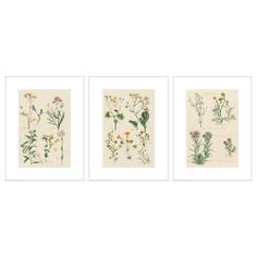 IKEA - white frames, hang one on each side of bunny print