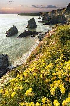 Bedruthen Steps, Cornwall, England by Ray Bradbury