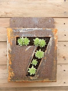 Jenny Cole Artist Blacksmith - Planters Plant your house number!