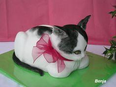 Edible Art | Black And White Cat Cake