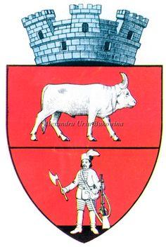 Ținutul Suceava. Județul Dorohoi. Darabani. Capital City, Coat Of Arms, Cities, Moose Art, Animals, Animales, Animaux, Animal Memes, Animal