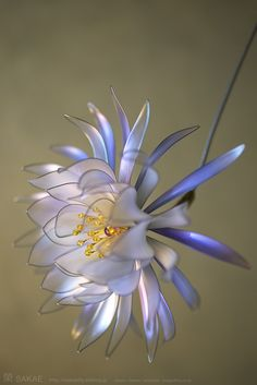 "Japanese hair accessory, ""A Queen of the Night Kanzashi""  ~ by Sakae, Japan   http://sakaefly.exblog.jp/   http://www.flickr.com/photos/sakaefly/"