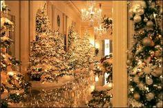 Christmas trees line the Cross Hall for the 2004 Christmas season at the White House.