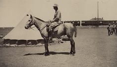 Mounted soldier of The Cameronians (Scottish Rifles) at camp in South Africa, with Greylingstad Train Station in the background. Highlanders, Rifles, Train Station, Soldiers, South Africa, Scotland, Battle, Two By Two, Military