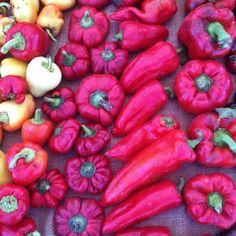 vegetable gradation via @happymundane on instagram