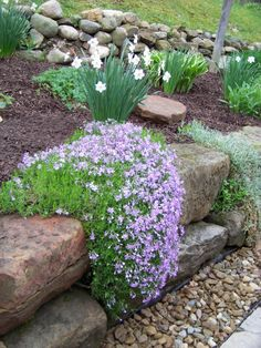 Country  Garden & Patio, This Country Patio features tumbled pavers, sandstone, flowers,antiques and handmade items.  , Creeping Phlox drape our sandstone. My husband built this sandstone wall by hand.  We receiveed them from my sister when she tore down an old barn.   , Patios & Decks Design