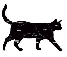 Infográfico mostra onde os gatos mais gostam de receber carinho.