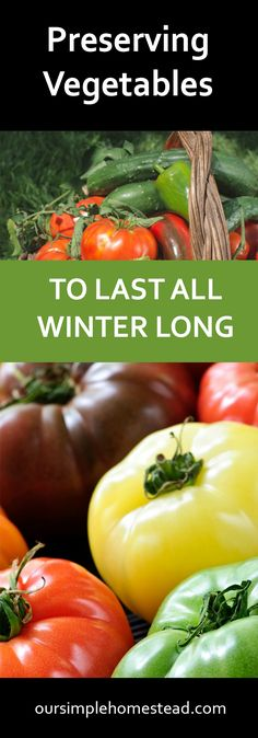 Preserving Vegetables to Last all Winter Long You've spent months planning, planting, growing, watering, fertilizing and now your garden is producing baskets of fresh vegetables you can start preserving.