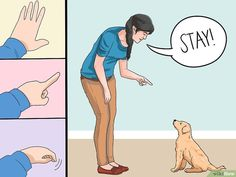 How to Train a Golden Retriever Puppy. It's hard not to love a golden retriever puppy. Unless she happens to be peeing on your floor or eating your shoes. Training your golden retriever from a young age will help form a bond between you. Dog Training Methods, Basic Dog Training, Dog Training Techniques, Puppy Training Tips, Potty Training, Training Dogs, Training Classes, Agility Training, Crate Training