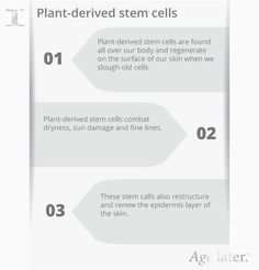 Cells and Anti-Aging Learn more about plant-derived stem cells.Learn more about plant-derived stem cells. Cord Blood Banking, Image Skincare, Organic Makeup, Blood Test, Stem Cells, Our Body, Healthy Skin, Skin Care Tips, Anti Aging