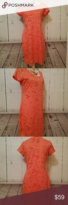 NWT Tiana B. Flowered coral dress MED MSRP $98!! JUST ARRIVED! so pretty and GORGEOUS coral color. Beautiful flowers design that is so feminine. Completely lined and attached with silky soft and stretchy material. The sleeves are short and somewhat cap and the only part that is not lined. Lovely for spring/Easter!! The color is absolutely CORAL beautiful!! I will have to pick orange in the color selection but it is coral and absolutely beautiful!! Just about at knee. Glad to measure just let…