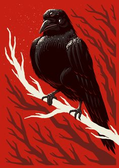 Winter Is Coming by Ian Jepson, via Behance
