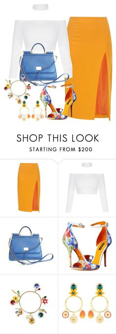 """Untitled #3321"" by fashion-nova ❤ liked on Polyvore featuring Altuzarra, Dolce&Gabbana, Summer and colorful"