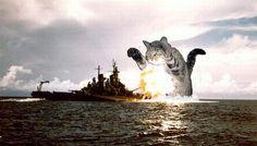 юмор корабли: 23 тыс изображений найдено в Яндекс.Картинках