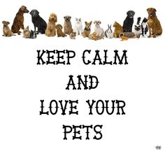 KEEP CALM AND LOVE YOUR PETS - created by eleni