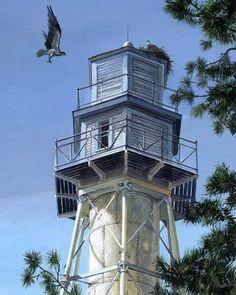 Hilton Head faro con Osprey   Hilton Head, SC