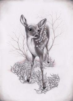 fawn illustration | fawn # animal # illustration