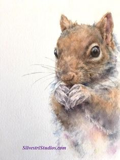 My squirrel watercolor is available as a cute art print and greeting cards.  Woodland animal prints are perfect for wildlife art lovers, in addition to nursery decor and wall art!  To view more animal art by Teresa Silvestri, visit www.SilvestriStudios.com.  (Photo reference thanks to Craig Maisfield)