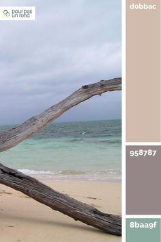 Palette pour site beige, mauve et vert. Définir les couleurs de ta marque https://www.pourpasunrond.fr/definir-couleurs-de-marque/