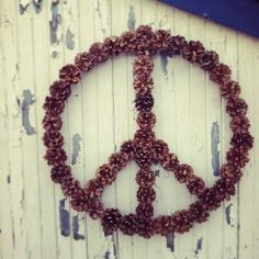 Pinecone peace wreath.  Hot glue them together.  Can be decorated with various ribbons, berries and/or painted.