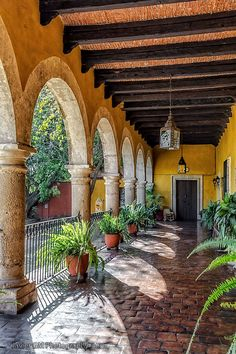 698 Best Jardines Mexicanos images in 2020 | Hacienda ... on Mexican Backyard Decor  id=43467