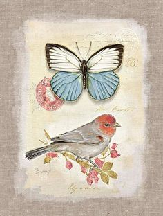 Printables - Butterfly and bird - Art In Motion