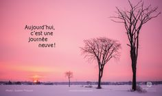 Citations de Nicole | Nicole Bordeleau Good Quotes For Instagram, Jolie Phrase, French Quotes, Yoga, Best Quotes, Meditation, Messages, Sunset, Inspirer