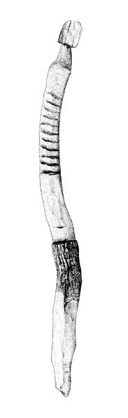 'Red Man' of Kilbeg. An anthropomorphic wooden figure found in Ballykean Bog in 2003. The figure is 2.31m long, (16cm max. diameter),It is marked with a waist, navel, possibly ribs and a neck. A bulbous head was originally attached to this, but has been broken off. The wood has been identified as alder. A sample from the figure has been radio-carbondated to 1740–1531 cal. BC. http://www.le.ac.uk/has/ps/past/past52/past52.html#kilbeg