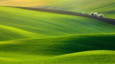 緑の絨毯!チェコの秘境「モラヴィア」の大草原が言葉を失う美しさ | RETRIP