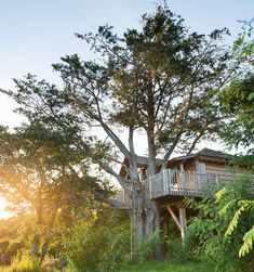 These luxury treehouses are the stuff dreams are made of. Each combines back-to-nature wonder with plenty of life's little luxuries. Yves Rocher, Eco Construction, Eco Design, Best Spa, Wellness Spa, Hotel Spa, Hotel Reviews, Architecture, Eco Friendly
