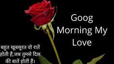Today We are Share Free Good Morning 4k HD Images Wallpaper , Good Morning 4k HD Images Photo Pics , Flower Nature Good Morning 4k HD Images pictures . Goog Morning, Hindi Good Morning Quotes, Morning Quotes Images, Good Morning Images, Movie Posters, Free, Gud Morning Images, Film Poster, Good Morning Picture