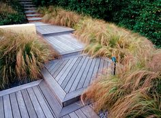 Bowing grasses line well framed decking boardwalk (Masters of Design: Anthony Paul, Thinking Outside the Boxwood). Modern Landscaping, Outdoor Landscaping, Garden Landscape Design, Landscape Architecture, Small Gardens, Outdoor Gardens, Garden Stairs, Outdoor Stairs, Ornamental Grasses
