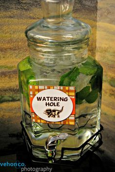Dinosaur Party:  watering hole (water + mint)