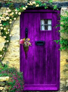 Purple Garden Door and I love the contrast with the wall and flowers