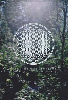 .:.:.:.:.:.Bring Me The Horizon.:.:.:.:.:. I really want to learn how to draw this but I don't think I ever will be able to ha