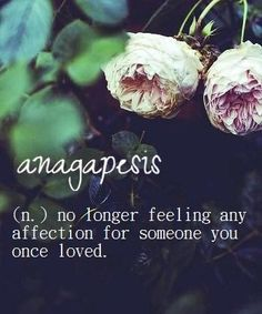 Anagapesis ~ (n.) no longer feeling any affection for someone you once loved.