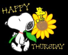 Snoopy Love, Charlie Brown And Snoopy, Snoopy And Woodstock, Happy Thursday Pictures, Thinking Of You Quotes, Snoopy Cartoon, Pet Friendly Apartments, Snoopy Quotes, Good Morning Wishes