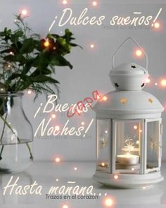Spanish Greetings, Snow Globes, Flower Birthday Cards, Day For Night, Videos, Projects To Try, Christmas Ornaments, Holiday Decor, Flowers
