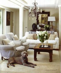 Loving the combination of the brown striped pillows and the accent chairs!