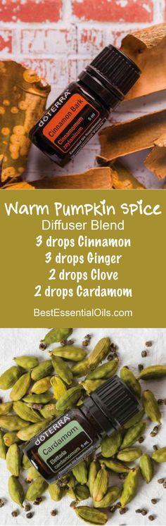 Warm Pumpkin Spice doTERRA Diffuser Blend