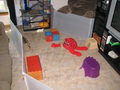 Idea for a rats playpen made out from Coroplast  Source: http://www.ratshackforum.com/forum/viewtopic.php?f=5=1828