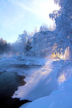Frozen Lake, Finland - I love the sunset peeping through the trees and adding warmth to this snowy scene.